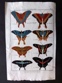 Diderot C1790 Antique Hand Col Print. Butterflies 08